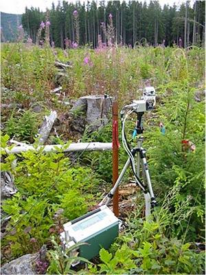 LI-COR LI-6400 photosynthesis measurement system