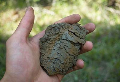 Hand holding soil with red streaks
